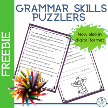 Winter Riddles for Grammar Practice FREEBIE