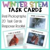 Winter STEM Task Cards