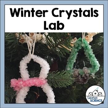 Winter Science Activity: Making Borax Crystals