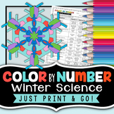 Winter Science Activity - Color By Number - Fun Winter Science Worksheet