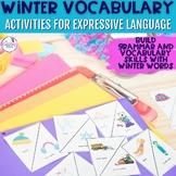Winter Themed Vocabulary & Grammar Activities