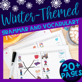 Winter Themed Vocabulary & Grammar Activities