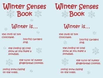 Winter Senses Mini Book