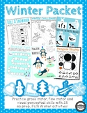 Winter Sensory Motor Packet - Fine, Gross and Visual Motor Activities