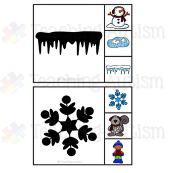 Winter Shadow Matching Task Cards