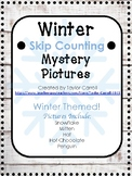 Winter Skip Counting Mystery Picture