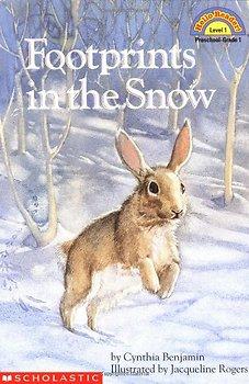 Winter Snow Stories