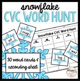 Winter Activity Snowflake CVC Word Hunt Sort