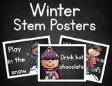 Winter Stem Posters