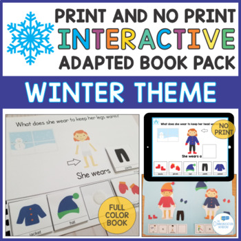 Winter Theme Adapted Book and File Folder Game - WH Questi