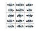 Winter Theme Word Sort (digraphs ch, tch & wh)