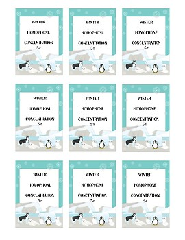 Winter Themed Homophone Concentration Game - 5≥ letters