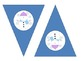 Winter Themed Pennant Bunting