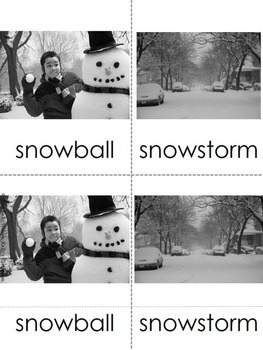 Winter Three Part Cards Vocabulary Cards