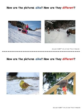 Winter Turn and Talk Cards - Compare and Contrast - Great for ELLs