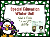 Winter Unit for Special Education