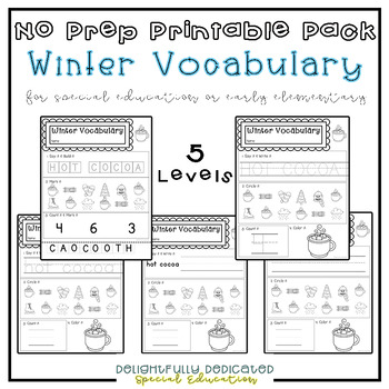 Winter Vocab Worksheets: Special Ed or Early Elementary No