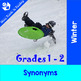 Winter Vocabulary (Synonyms, Antonyms, Compound Words, Words) BUNDLE