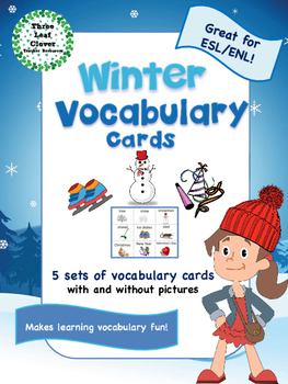 Winter Vocabulary Cards - Great for ESL/ENL