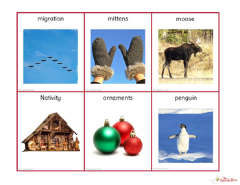 Winter Vocabulary Cards:  Photo