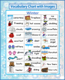 Winter Vocabulary Chart/Poster with Images