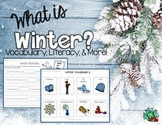 Winter Vocabulary/ Literacy Unit
