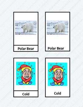Winter Vocabulary Three Part Cards
