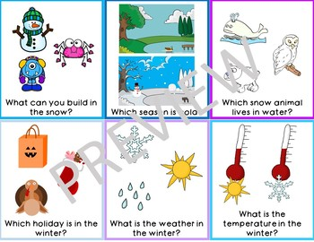 Winter WH Question Task Cards