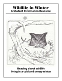 Wildlife in Winter - A reading resource with some student