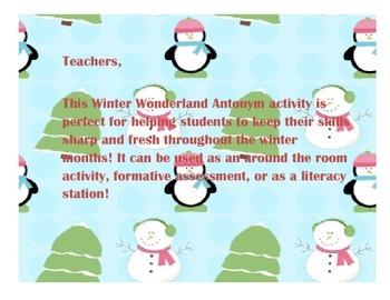 Winter Wonderland Antonyms!