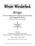 Winter Wonderland Bingo! A Speech and Language Re-enforcem