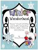 Winter Wonderland Integrated Winter, Math, Science, and Literacy Activities