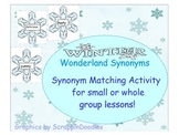 Winter Wonderland Synonyms
