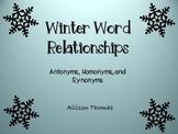 Winter Word Relationships
