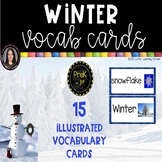 Winter Vocabulary Word Cards - Chevron