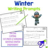 Winter Writing Activities for students with autism