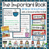 Winter Writing Prompts and Winter Word Wall for your Writi