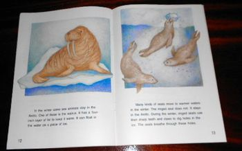 Winter in the Arctic 3rd Grade Leveled Reading Book (Animals) + Story Questions