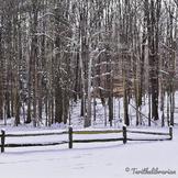 Winter is still here!