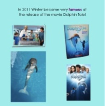 Winter's Tale (Winter the Dolphin's Story)