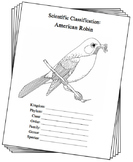 Wisconsin State Bird Notebooking Set (American Robin)