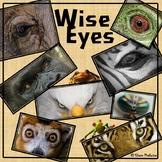 Wise Eyes: Animal Adaptations Matching Activity