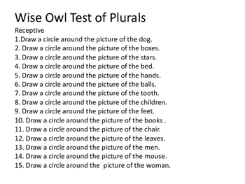 Wise Owl Test of Plurals