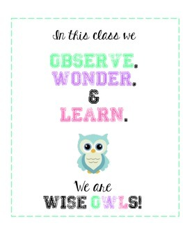 Wise Owls Poster
