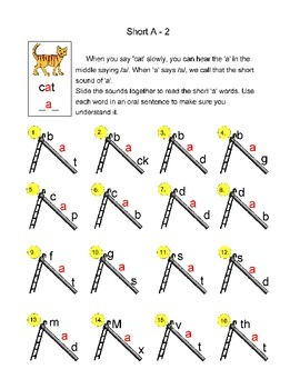 Wise Owl's Vowels and Sight Words