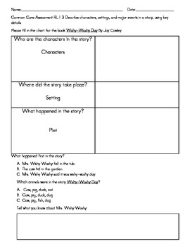 Wishy Washy Day Assessment