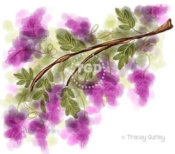 Wisteria - wisteria clip art, wisteria Printable Tracey Gurley Designs