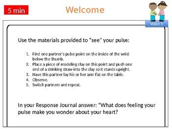 Wit & Wisdom Grade 4, Module 1, Lesson 7 PowerPoint