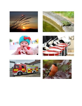 Wit & Wisdom Kindergarten Module 1 Lesson 8 Pictures