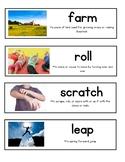 Wit & Wisdom Module 2 Vocabulary Kindergarten